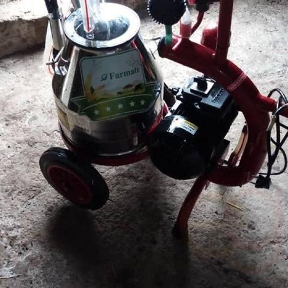 ACIiiL Single milking machine for sale