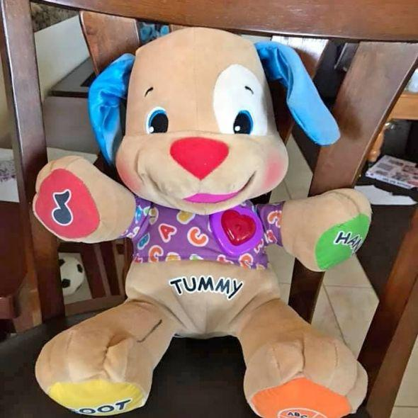 Fisher Price Singing Dog